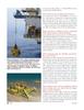Marine Technology Magazine, page 38,  Apr 2005 satellite fields