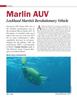Marine Technology Magazine, page 30,  Jan 2014