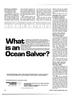 Maritime Reporter Magazine, page 34,  Jan 15, 1981 Louisiana