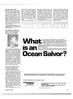 Maritime Reporter Magazine, page 17,  Apr 15, 1981 Texas
