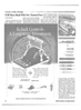 Maritime Reporter Magazine, page 12,  Nov 2001 ferry operator