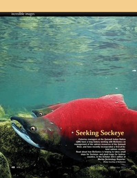 Marine Technology Magazine, page 48,  Sep 2011 Quinault River