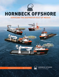 Offshore Energy Reporter Magazine, page 2nd Cover,  Jan 2015