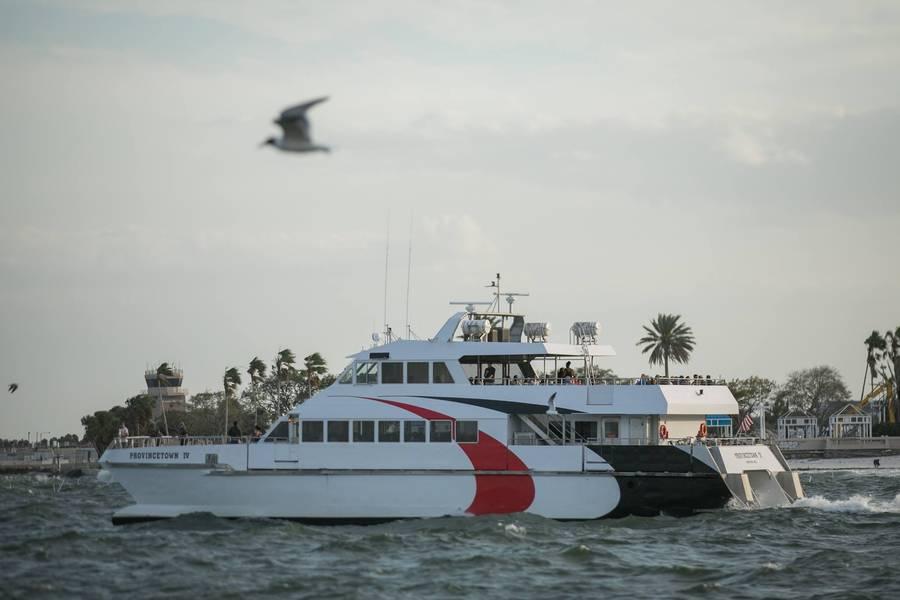 Еще одно изображение сезонного парома, направляющегося в следующий док (CREDIT: Cross Bay Ferry)