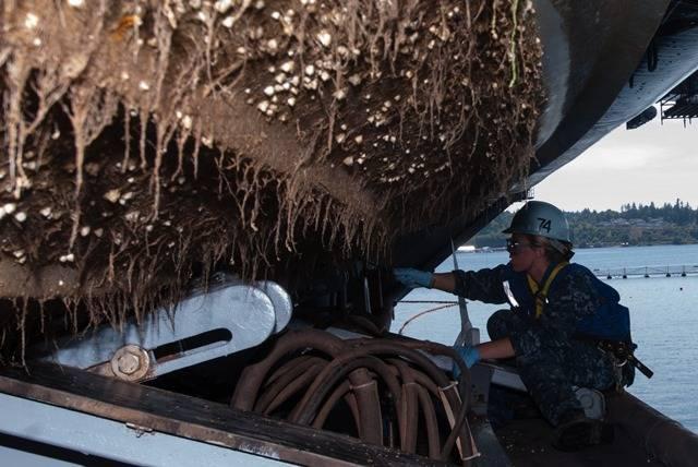 (生物污染照片 - 美国海军照片由大众传播专家希曼学徒克里斯托弗弗罗斯特发布/发布[水手从一艘刚性船体充气船的底部刮下藤壶。]
