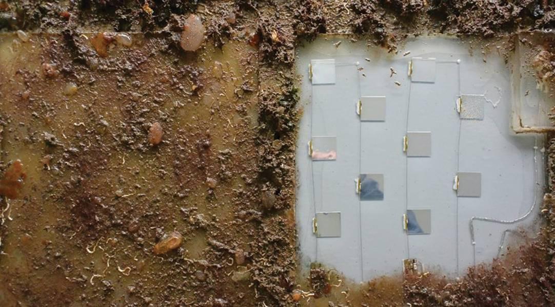 Abbildung 1: UV-C-Prototyp im Hafen von Melbourne (Australien) vor Biofouling geschützt. Auf der linken Seite befindet sich eine Benchmark-Silikonplatte ohne UV-C, die vollständig biologisch verschmutzt ist (zur Prüfung von Defense Science and Technology).