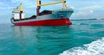 Bulk Ship Management vessel (Photo courtesy of Alfa Laval