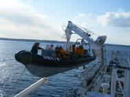 Caley Davits for Japanese Fisheries hi-resWEB.jpg