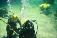 ROV and Divers in tank 2.jpg