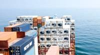 Image: MPC Container Ships