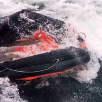 An inflatable life raft from sunken RoPax ferry Estonia (Photo: Accident Investigation Board Finland)