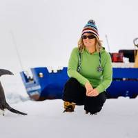 Barbara Tucker, a passenger on the MV Akademik Shokalskiy, watches a penguin on the ice off east Antarctica on Dec. 29. / Andrew Peacock, AFP/Getty Images