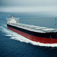 Bulk carrier: File photo