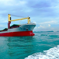 Bulk Ship Management vessel (Photo courtesy of Alfa Laval