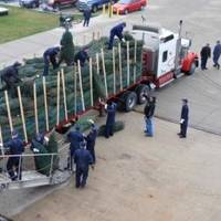 Christmas tree loading: Photo credit USCG