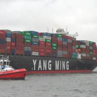 Courtest Yang Ming