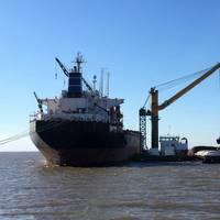 DAMEN Transshipment Crane Barge for Agribulk handling Photo Damen