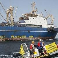 Earlier photo of Oleg Naidenov courtesy of Greenpeace