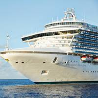 Emerald Princess (File photo: Princess Cruises)