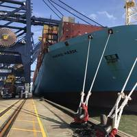 File Image: The Madrid Maersk, a 20,000+ TEU Box ship (CREDIT: HR Wallingford)