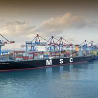 File Image: the MSC  CREDIT: Haifa Port