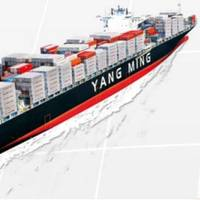 File Image: Yang Ming Marine Transport Corporation