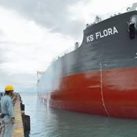 (File photo: TSUNEISHI Shipbuilding)