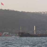 Five Iskenderun bulk carriers will be the first hulls applied with Nippon Paint Marine's new FASTAR antifouling. Pictured is the 32,178dwt Akdeniz-M (Photo: Nippon Paint Marine)
