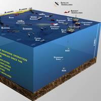 Image courtesy Deepwater Horizon Unified Command