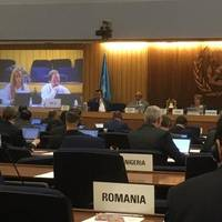 John Bradshaw, IMCA's Policy and Regulatory Affairs Manager, and Eleni Antoniadou IMCA's Policy and Regulatory Affairs Adviser appear on a screen at the IMO Sub-Committee on Human Element, Training and Watchkekeping (HTW4) (Photo: IMCA)