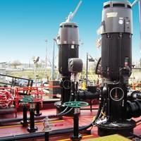 Leistritz Universal Cargo Pump
