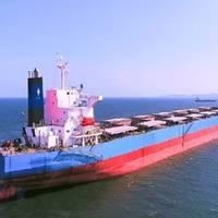 (L-R) Shail Al Rayyan and Shail Al Dukhan. Photos: S'hail Shipping and Maritime Services