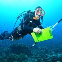 Marine Scientist at Work: Photo credit Perseus Award