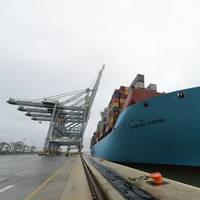 Munkebo Maersk (Photo: DP World)