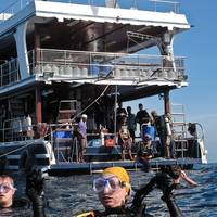 MV Blue Star: Photo courtesy of Chalong Sea Sports