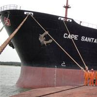 Photo courtesy Krishnapatnam Port Company Ltd