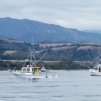 Photo courtesy of the Refugio Response Joint Information Center