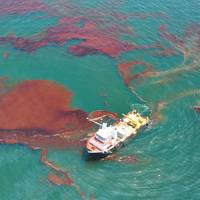 Photo: Office of Response and Restoration, NOAA's Ocean Service,  US Govt.