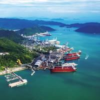 (Photo: Tsuneishi Shipbuilding)