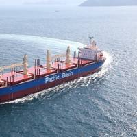Pic: Pacific Basin Shipping Limited