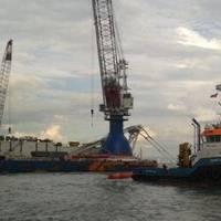 Shoalbusters: Photo courtesy of Acta Marine