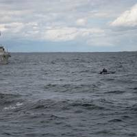 The Belgian mine hunter Primula (M924) conducts a diver exercise during BALTOPS 2016. BALTOPS is an annual recurring multinational exercise designed to improve interoperability, enhance flexibility and demonstrate the resolve of allied and partner nations to defend the Baltic region. (U.S. Navy Photo by Mass Communication Specialist Seaman Alyssa Weeks )