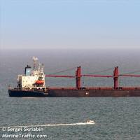 The bulk carrier WISE HONEST (CREDIT: MarineTraffic.com / © Sergei Skriabin