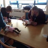Training in Paediatric First Aid Photo Shoreham Port.
