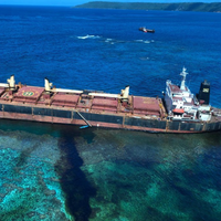 Up to 75 tonnes of heavy fuel oil has dispersed across the island's sea and shoreline, contaminating the ecologically delicate area. Credit: DFAT