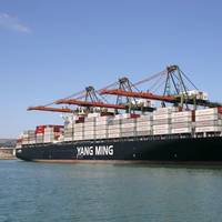 Yang Ming Vessel
