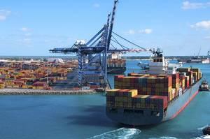 Bulk carrier M/V Nadeshiko (Photo: Imabari Shipbuilding)