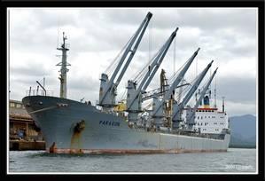 Photo courtesy Port of Santos