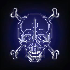 Cyber Security Skull web.jpg