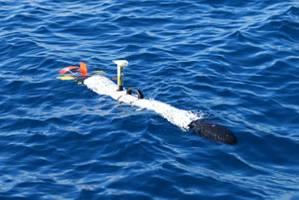 Photo courtesy OceanServer Technology, Inc.